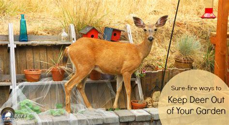 deer proof gardens   fire ways   deer