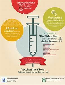 Vaccines Infographic  U2013 Expanded Program On Immunization