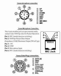 Mic And Data Plug