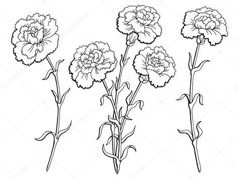 Flor Cravo Gráfico Preto Branco Isolado Desenho Ilustração