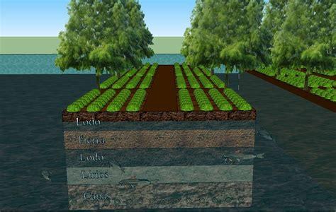 ¿Son las chinampas un ejemplo de sustentabilidad del futuro?
