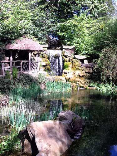 build  garden pond making  pond diy doctor