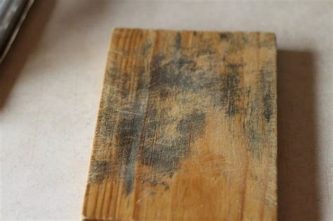 tips    remove mold  wood clean water partners