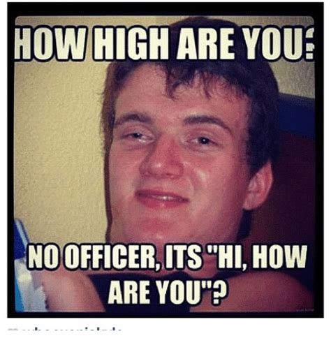 Hi Memes - funny high memes of 2017 on sizzle cannabies