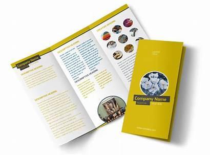 Brochure Template Institute Templates Fold Tri Brochures