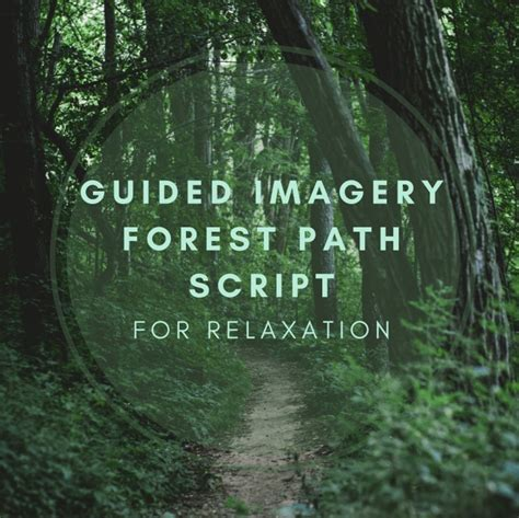 Guided Imagery Forest Path Script For Relaxation Remedygrove