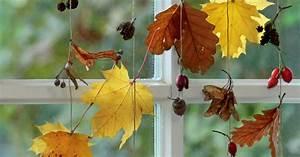 Herbst Dekoration Fenster : bastelanleitung mobiles aus herbstlaub mein sch ner garten ~ Watch28wear.com Haus und Dekorationen
