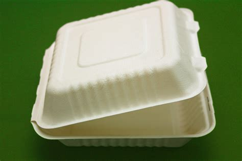Why Biodegradable Take out Boxes and Cups Are the Way to Go   Green Communities   heraldstandard.com