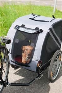 Samax Fahrradanhänger Test : hundefahrradanh nger test 2017 die besten hundeanh nger ~ Kayakingforconservation.com Haus und Dekorationen