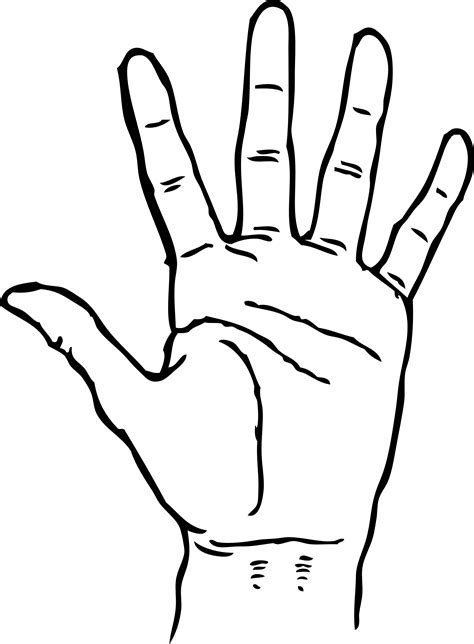 hand palm facing  black white  art coloring