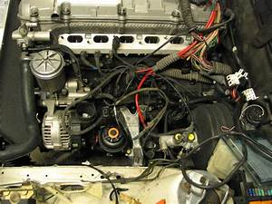 S50  M50 Engine Compartment Wiring