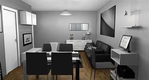 Deco Noir Et Blanc : decoration salon blanc gris noir ~ Melissatoandfro.com Idées de Décoration