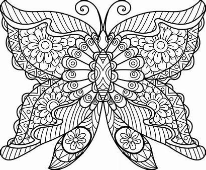 Mandala Mariposa Mandalas Colorear Mariposas Animales Dibujos