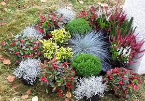 Blumen Im Winter : grabbepflanzung einzelgrab wechselbepflanzung herbst winterversand harro 39 s pflanzenwelt kaufen ~ Eleganceandgraceweddings.com Haus und Dekorationen