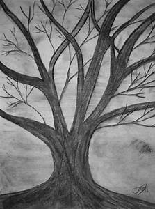 original drawing charcoal dead tree by