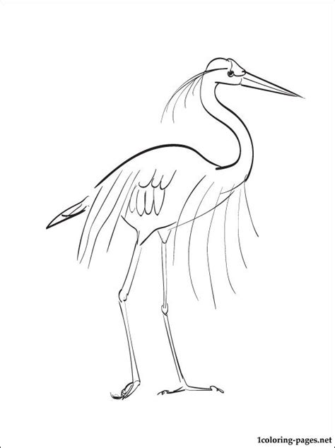 coloring page great blue heron coloring pages