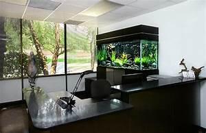 Aquarium Dekorieren Ideen : aquarium am arbeitsplatz beruhigende und sch ne dekoration ~ Bigdaddyawards.com Haus und Dekorationen