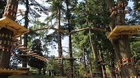 Courses | Elmwood Park Zoo