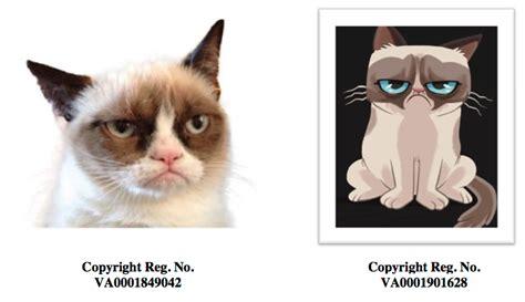 Grumpy Cat Brings Grumpy Lawsuit Over Infringement Of