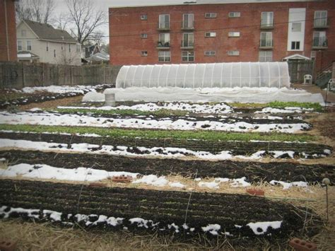 Garden To Grow Going Green Mill by It S Not Work It S Gardening January At The Gardenworks