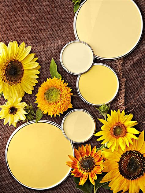 find a happy medium for your room with these yellow paint