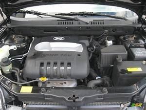 2001 Hyundai Santa Fe Engine Diagram  2001  Free Engine Image For User Manual Download
