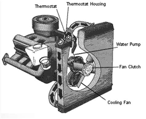 understanding fan clutches    time  replace  onallcylinders
