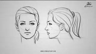 How to draw a female f...