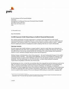 sample letter for review of financial statements auditor With cfo services engagement letter