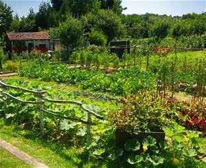 Plantes Amies Et Ennemies Au Potager : au printemps semis et plantation au potager ~ Melissatoandfro.com Idées de Décoration