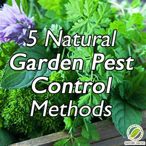 5 garden pest methods