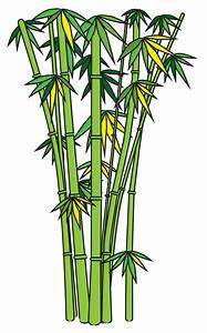How to Draw Bamboo: 8 Steps (with Pictures) - wikiHow