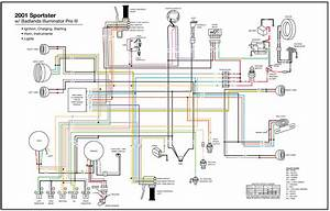 Wiring Diagram For 2000 883 Sportster  Wiring  Free Engine Image For User Manual Download