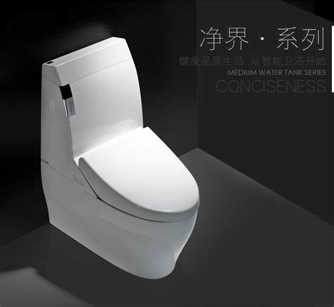 Japanese Wc Bidet by Automatic Bidet Toilet Ceramic Japanese Wc With Spray Kd