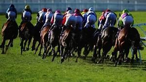 Heavy rain forces Ellerslie races to be postponed till ...