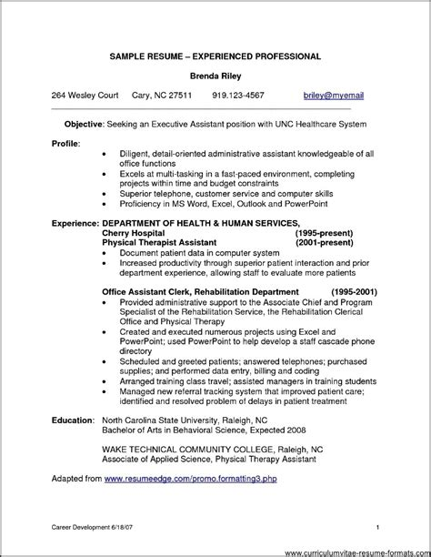 resume formats  experienced professionals