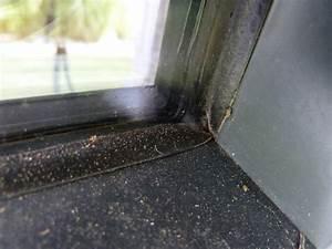 Fensterrahmen Abdichten Innen : wassereintritt bodentiefes fenster bauforum auf ~ Orissabook.com Haus und Dekorationen