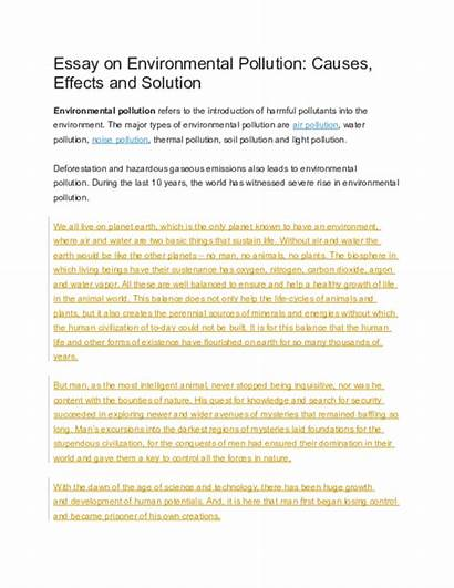 Pollution Essay Environmental Causes Effects Solution Academia