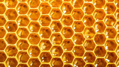 Can A Smart Beehive Network Of Open-source Hives Help S