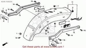 Honda Rebel 250 Wiring Diagram