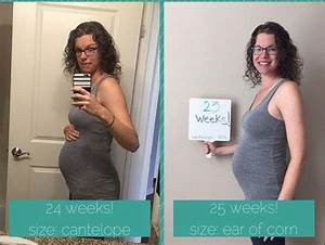 Pregnancy Update  Month 6  U2022 The New Wifestyle