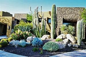 cactus et plantes grasses exterieur pour un jardin facile With amenagement exterieur maison moderne 11 plantes et amenagement jardin mediterraneen 79 idees