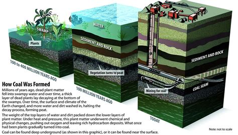 how does the formation of coal differ from that of natural