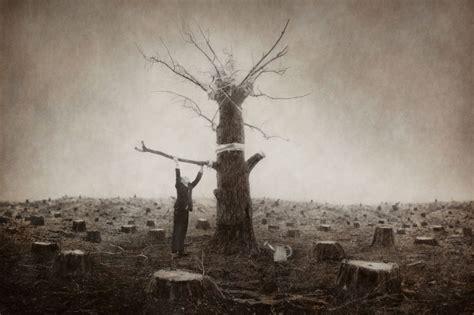 le monde surrealiste de robert  shana parkeharrison