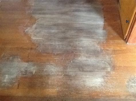 hometalk removing urine stains from hardwood floors