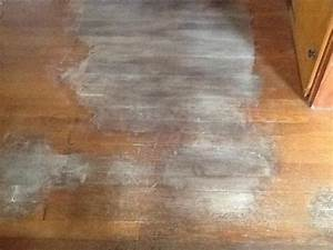 Hometalk removing dog urine stains from hardwood floors for Removing stains from laminate floors
