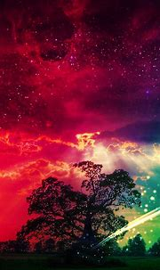 Magic Tree HD Wallpaper For Your Mobile Phone ...6689