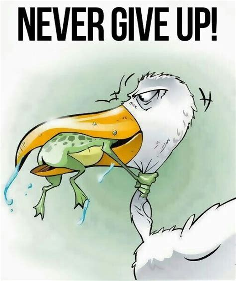 Never Give Up Meme - 172 best images about funny on pinterest funny game of thrones funny and support groups
