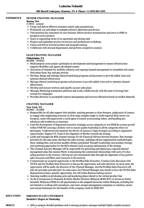 Channel Sales Manager Resume Sle by Channel Manager Resume Sles Velvet