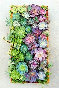 Mood, Board, Summer, Flowers, Color, Inspiration